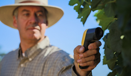 Growers Leverage Technology to Manage Vineyard Water Useage