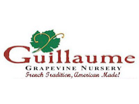 Guillaume Grapevine Nursery