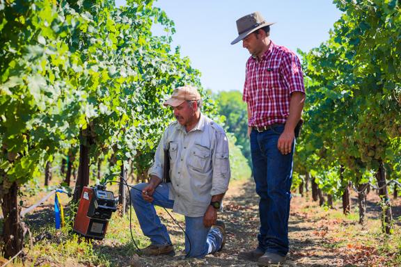Image result for vineyard moisture sensor