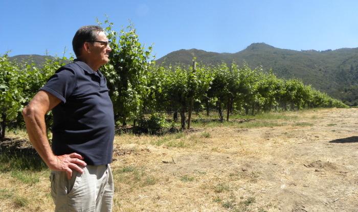 Chris Schlies standing in vineyard