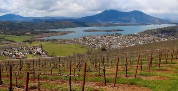 Vineyards, lake, and mountains