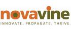 Nova Vine logo