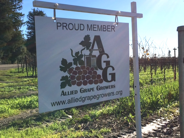 Allied Grape Growers sign in vineyard