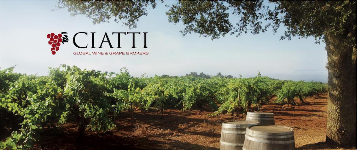 Ciatti Company banner