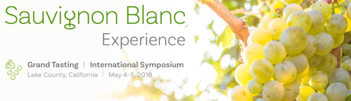 Sauvignon Blanc Experience Banner