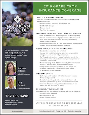 American AgCredit crop insurance worksheet image