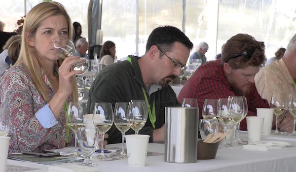 Sauvignon Blanc Experience, 2018, Credit Bill Groody