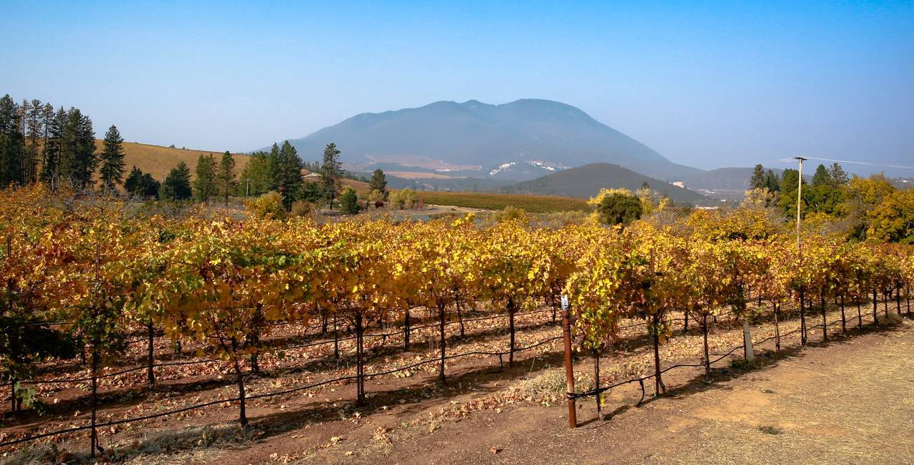 Mt Konocti and vineyards in Lake County, by Nathan Dehart