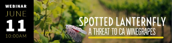 CAWG webinar on spotted latternfly