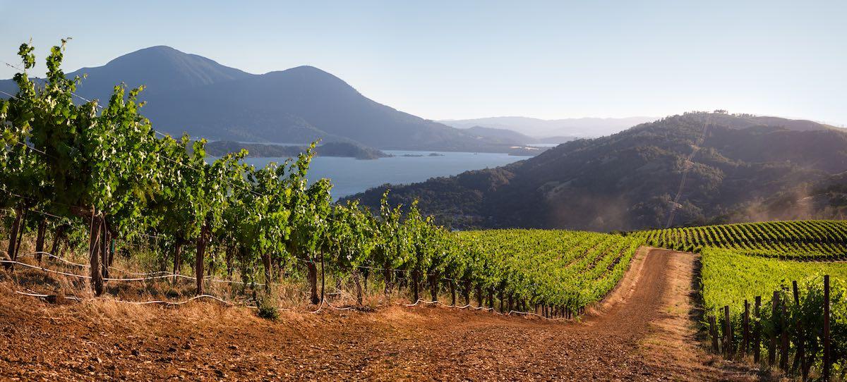 High Valley AVA, Lake County, Calif. by Nathan DeHart