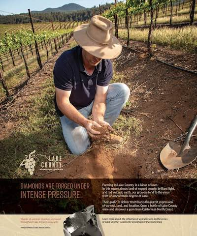 LCWC Advertisement for Wine Enthusiast, November 2020