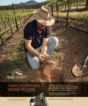 LCWC ad for Wine Enthusiast, December 2020