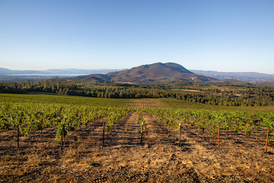 Red Hills AVA, Obsidian RIdge Vineyard and Konocti Mountain, Credit Nathan DeHart for LCWC